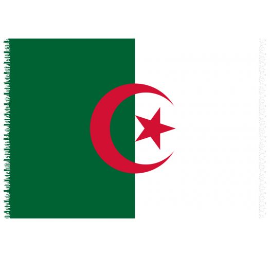 Brazilian beach towel - National flag Algeria