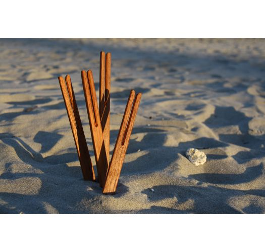 BEACH STICKS