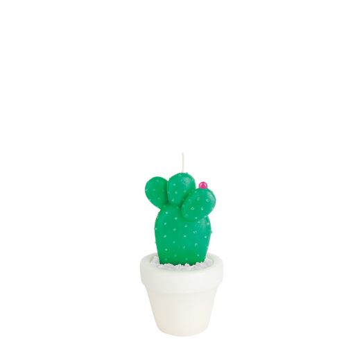 Small cactus in a flowerpot shape candle - ROUND CACTUS CANDLE SMALL