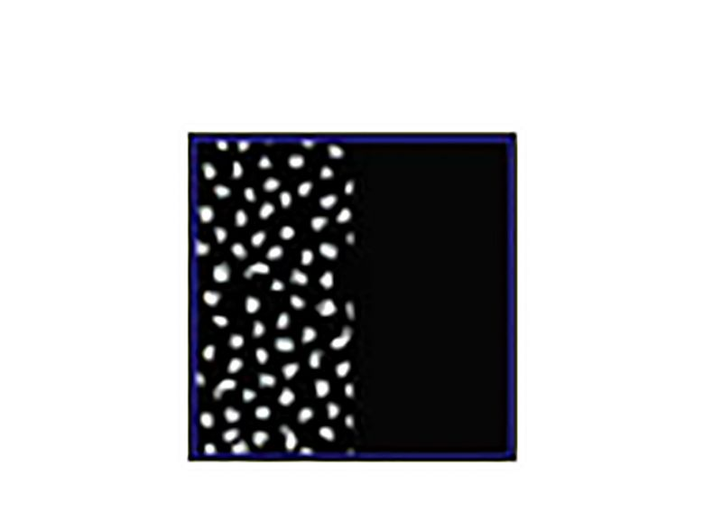 Reversible printed bra bikini top - TOP MALVA RUSTIC DOTS / BLACK NIGHT